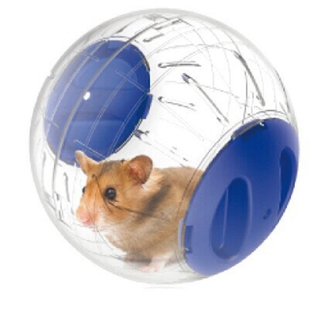 Bola de Hámster como juego para hamsters